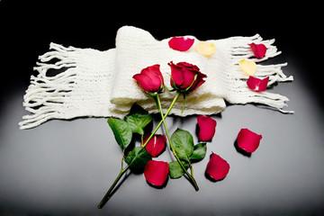 Dos rosas rojas unidas en un fondo negro con bufanda Poesía