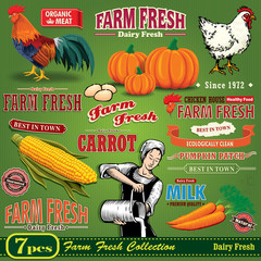 Vintage Farm Fresh poster design element set