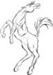Obrazy na płótnie, fototapety, zdjęcia, fotoobrazy drukowane : Sketch of  horse