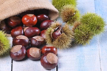 Chestnuts.
