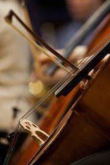 Fragment Cello closeup