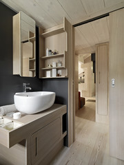 interior view of a modern bathroom with wood paneling