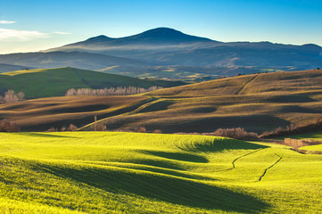 Tuscan colorful fields in the light of the setting sun in the ba