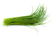 Young green onion leaves isolated on white.