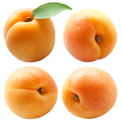 collection of fresh apricots with green leaf isolated on white b