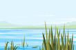 Bulrush Plants River Landscape - 77075083