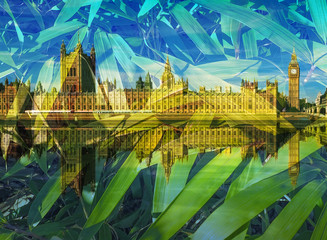 Houses of Parliament - Double exposure with bamboo leaves