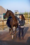 Amico cavallo 36