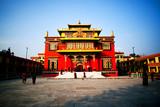 Famous Shechen Monastery in Kathmandu, Nepal
