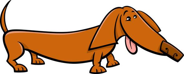 dachshund dog cartoon illustration