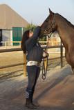 Amico cavallo 16