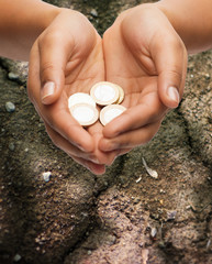 female hands holding euro coins over ground