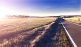 Aventuras por carretera.Camino y campos.Concepto de viaje. poster