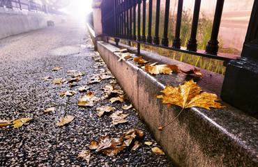 ciudad por la noche y antigua valla,hojas en el suelo y farola