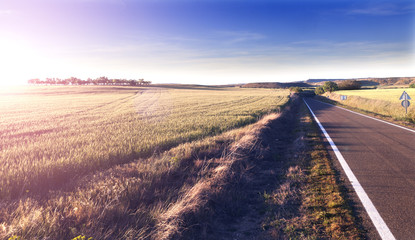 Aventuras por carretera.Camino y campos.Concepto de viaje.