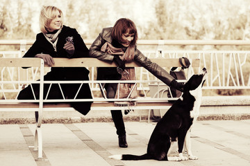 Two young fashion women and a dog