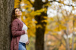 Young pregnant woman in the autumn park