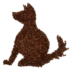 Dog of coffee beans