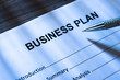 Pen And Business Plan Form