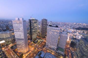 [東京都市風景]超広角で望む トワイライトの摩天楼新宿高層ビル街と東京全景 東京スカイツリーも望む