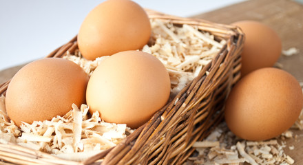 Egg on sawdust with old basket is over on wooden background