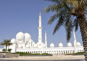 Emirati Arabi Uniti. Abu Dhabi. La grande moschea Sheikh Zayed