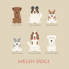 Set of welsh dogs
