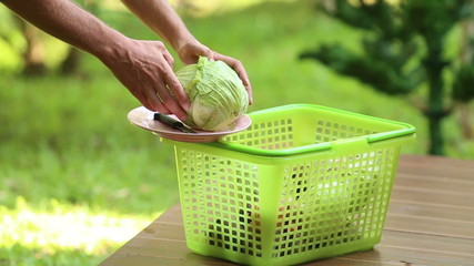 man knife cuts the excess leaves from cabbage for cooking tradit