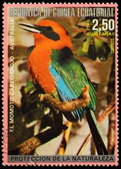 Equatorial Guinea postage stamp showing tropical birds - motmot