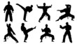 karate silhouettes - 77134223
