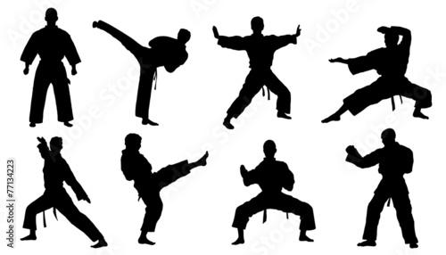 karate silhouettes - 77134223