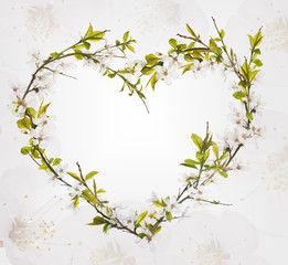 heart from cherry tree flowers on floral background
