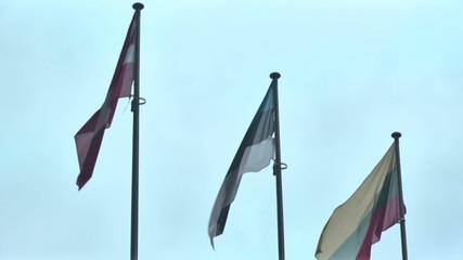 EU flags_2.mov