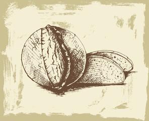 İllüstrasyon; Ekmek