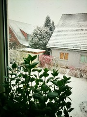 Blick aus dem Fenster im Winter