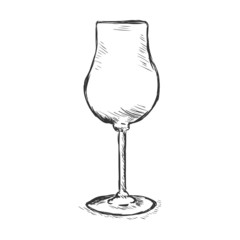 Vector Single Sketch Champagne Glass
