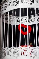 Cuore dentro una gabbia bianca su sfondo nero
