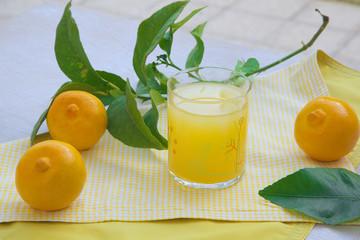 Fresh bergamot juice