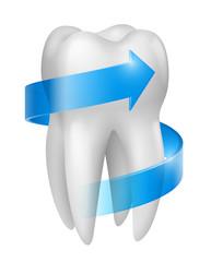 Dent vectorielle 3