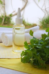 Coriander hair oil