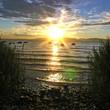 Sonne am Gardasee - Lake Garda