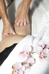 Spa treatment, anti cellulite massage and aromatherapy orchids