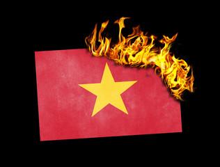 Flag burning - Vietnam