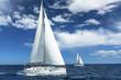 Sailboats participate in sailing regatta. Luxury Yachts.