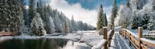 "Постер, картина, фотообои ""Зимний лес в Карпатах"""