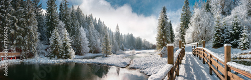 Staande foto Bossen Зимний лес в Карпатах
