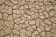 Desert texture - 77169647