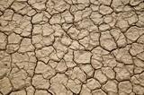Fototapeta Desert texture
