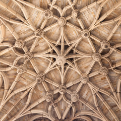 Gothic ceiling of cathedral in Albi, France