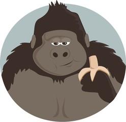 Gorilla eating banana
